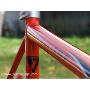 frame and fork CANYON ROAD RACE aluminium TDF swiss made